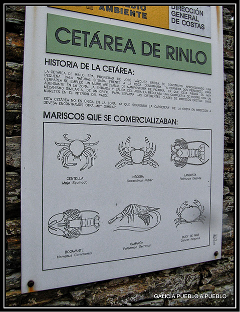 Information poster of the seafood that was produced in the cetareans.